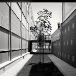 Paso exterior | Instituto de Educación Secundaria Alto Palancia, Segorbe